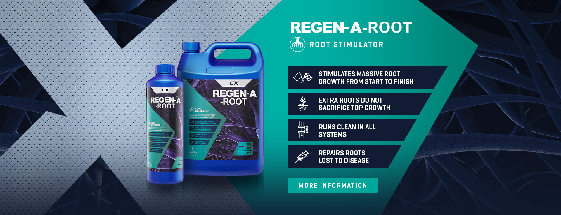 Rege-A-Root