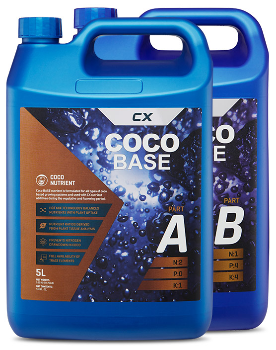Coco Base A&B main photo