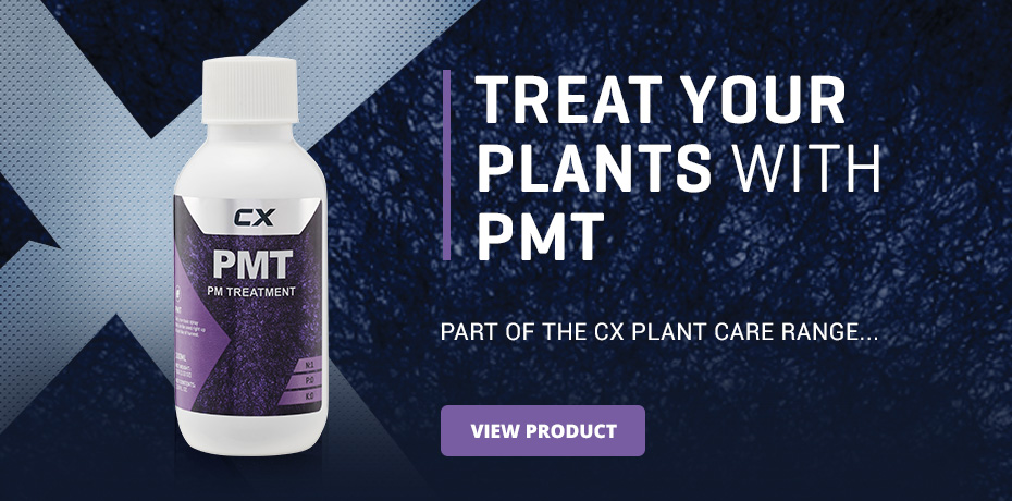 PMT Advert